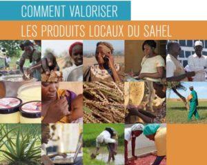 Les journées de l'Afrique de SOS SAHEL