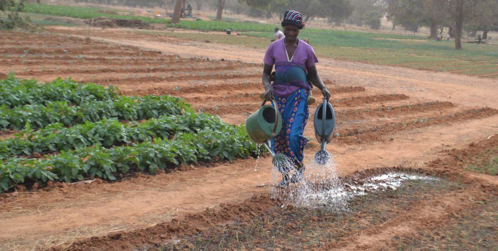 Agriculture Burkina Faso