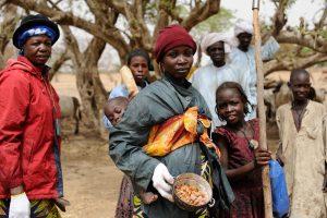 Gomme acacia Sahel