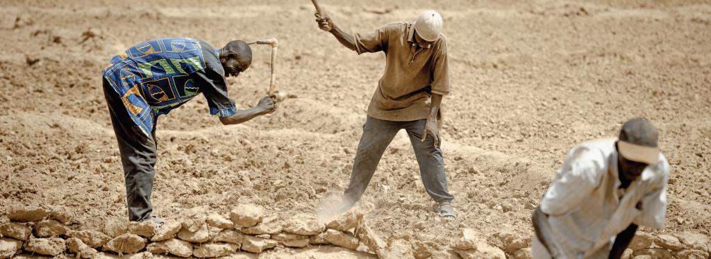Restauration des terres Burkina