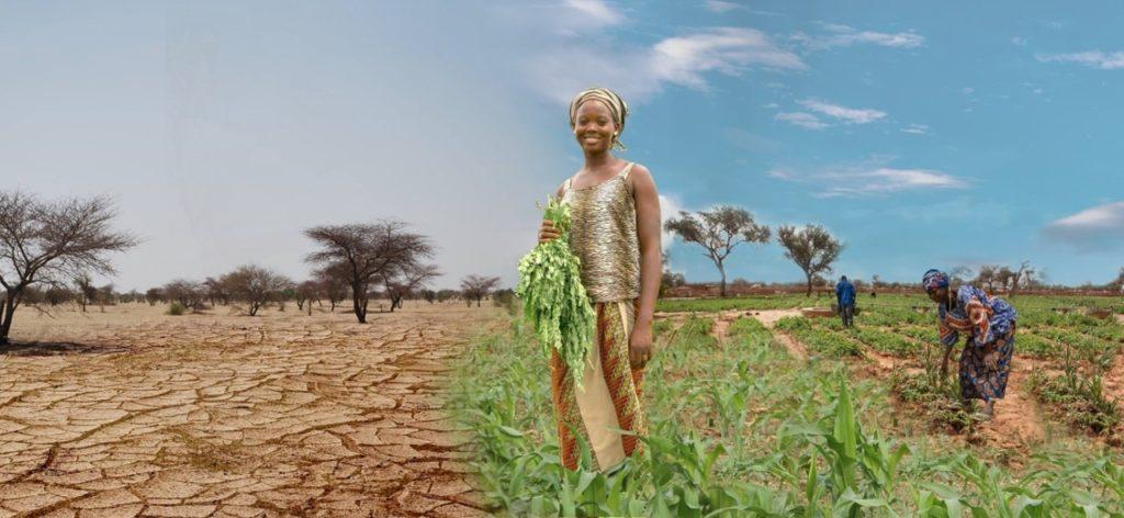 Agir contre la désertification
